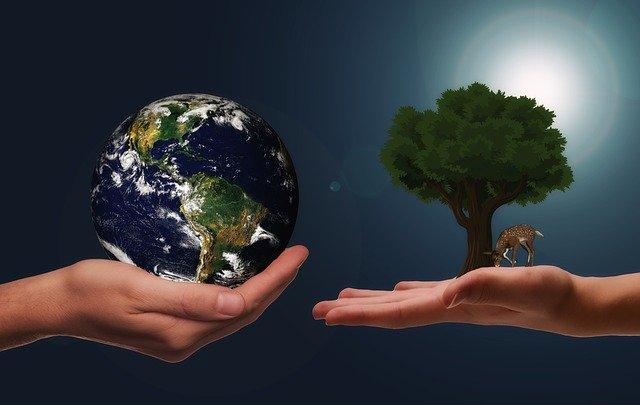 Klimaschutzkonzept und Klimaschutzmanager*in